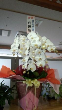 立派なお花が届きました!ありがとうございます。お花に負けそうな、小さな小さな発表会ですが、頑張ります。竹内教授のお力添えもありますので、ぜひ、ご来荘ください!